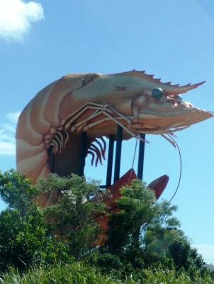 Big prawn.jpg